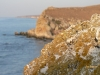 gen-plazh2007-48
