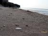 gen-plazh2007-57