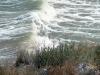 gen-plazh2007-71