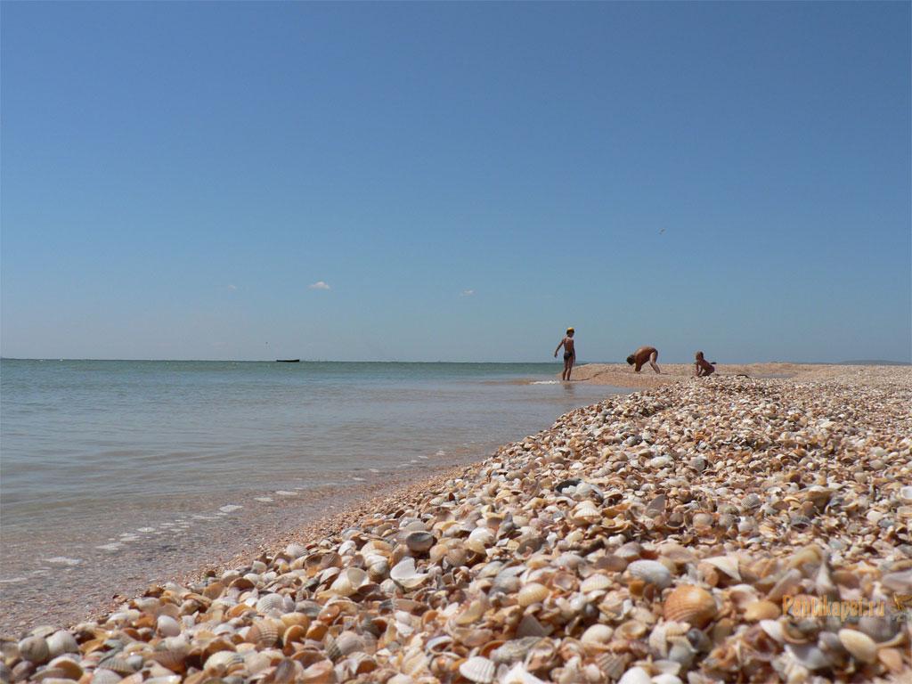 Ракушечный пляж, Восточный Крым