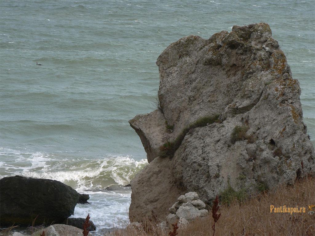 gen-plazh2007-30