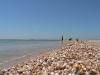 gen-plazh2007-22