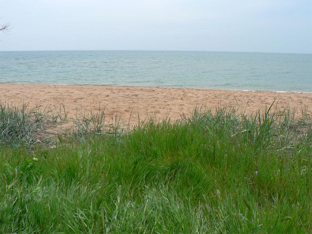 Героевка пляж