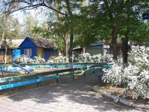"""В базе отдыха """"Реставратор"""" в Героевке - самый недорогой отдых!"""