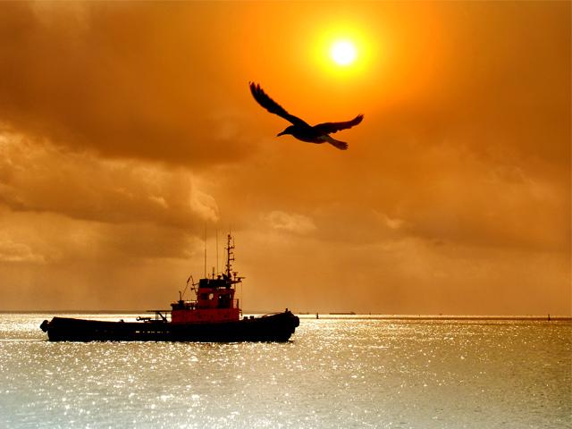 Керченский морской торговый порт