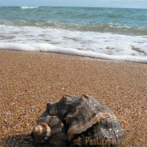 Фоторепортаж с пляжей Героевки