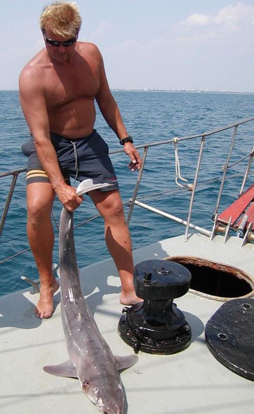 Акула катран за хвост