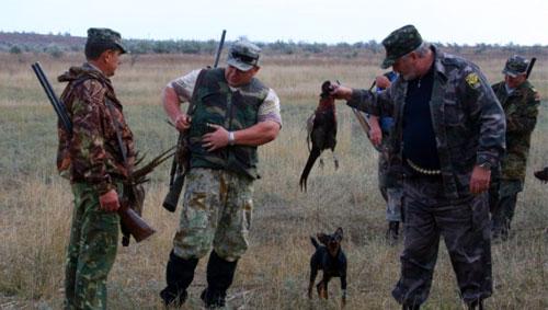 Охота на фазана в Керчи