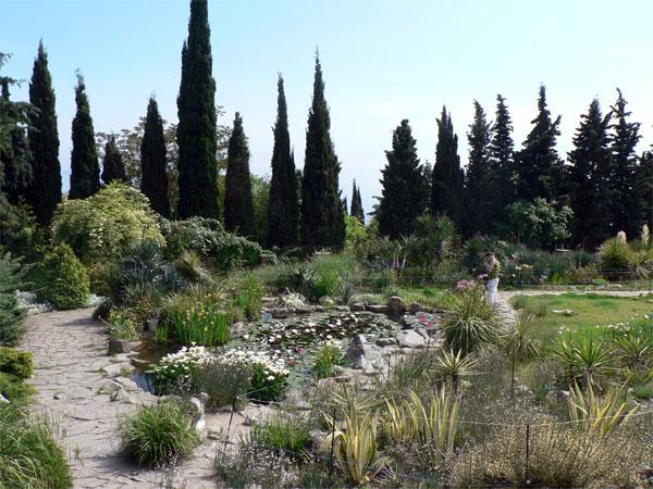 Крымский Никитский Ботанический сад