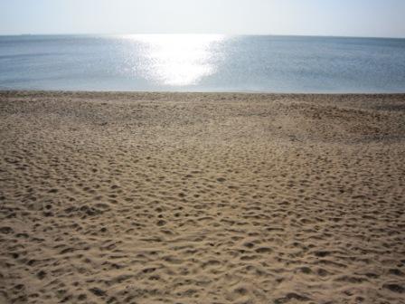Частный пансионат Флора, пляж в Героевке