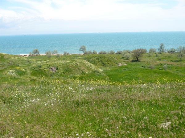 Керченская степь, около Героевки