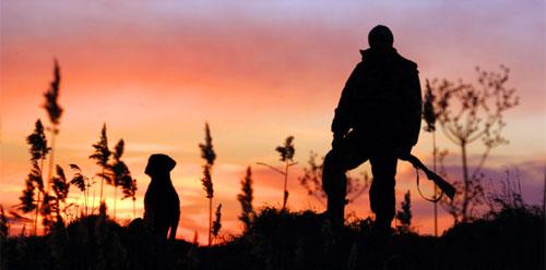 Охота на зайца в Керчи
