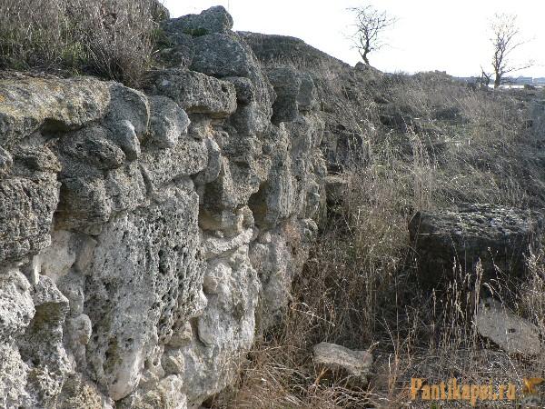2012-Porfmii-foto-18