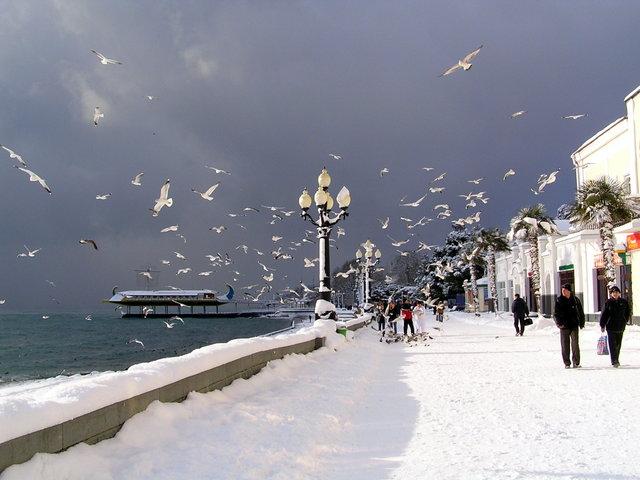 Солнце и зима в Ялте