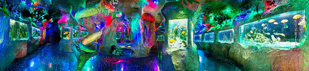 aquarium-3b